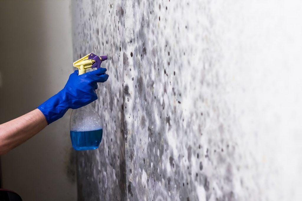 eliminare condensa dai muri - casaplast